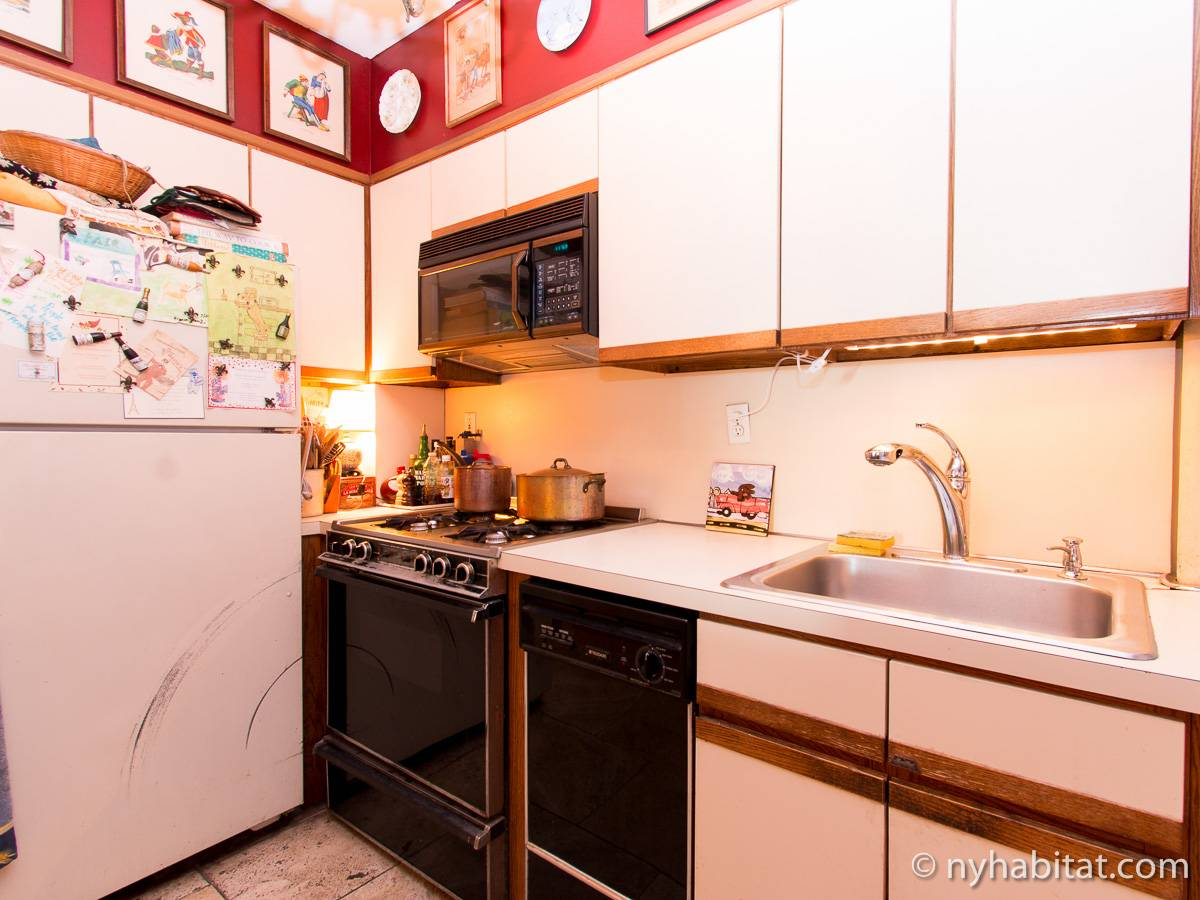 New York 2 Bedroom roommate share apartment - kitchen (NY-12146) photo 1 of 4