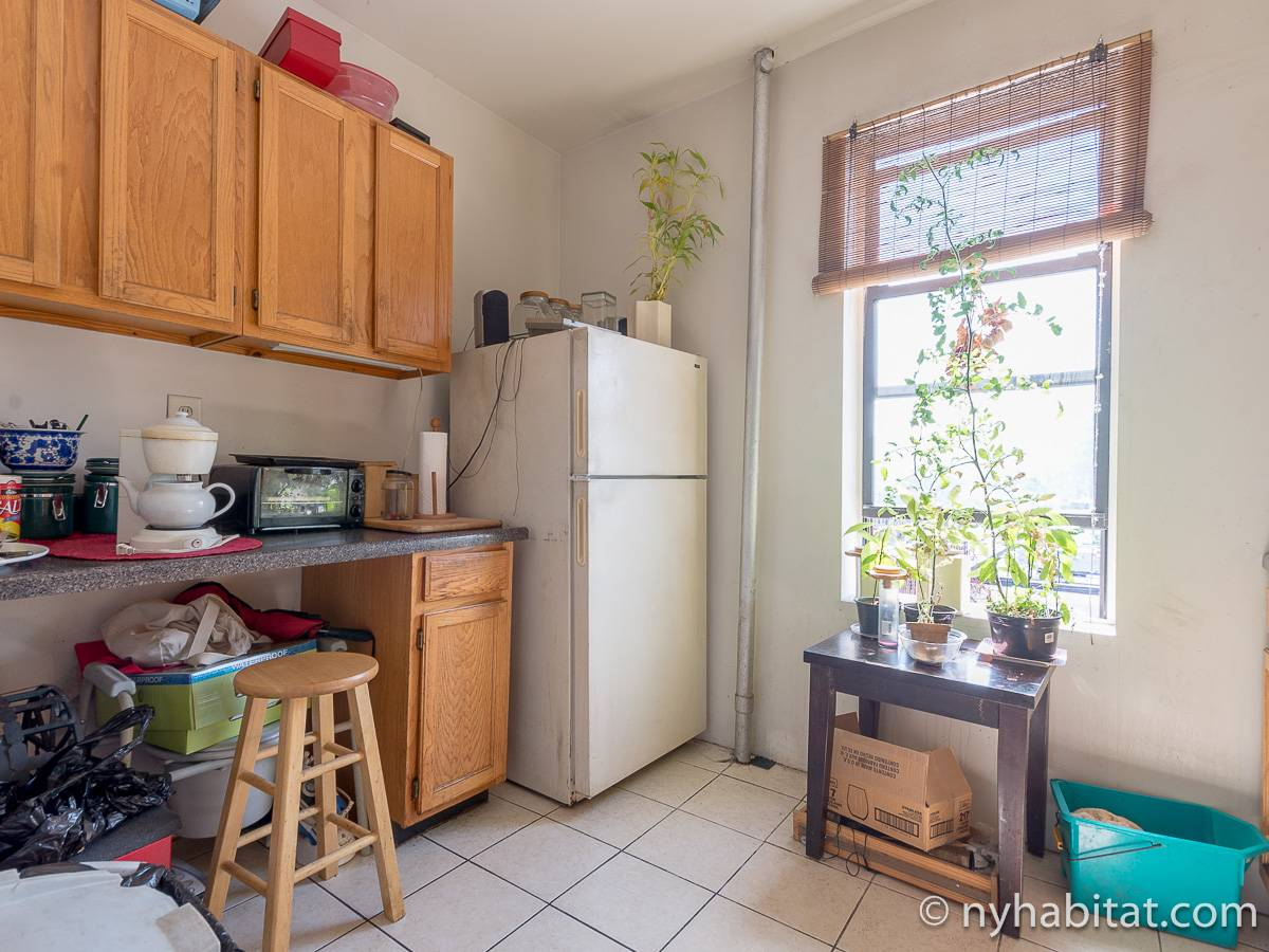 New York 2 Bedroom roommate share apartment - kitchen (NY-12825) photo 1 of 4