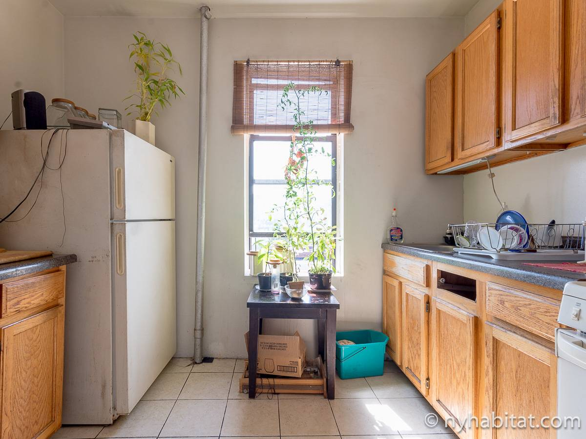 New York 2 Bedroom roommate share apartment - kitchen (NY-12825) photo 2 of 4