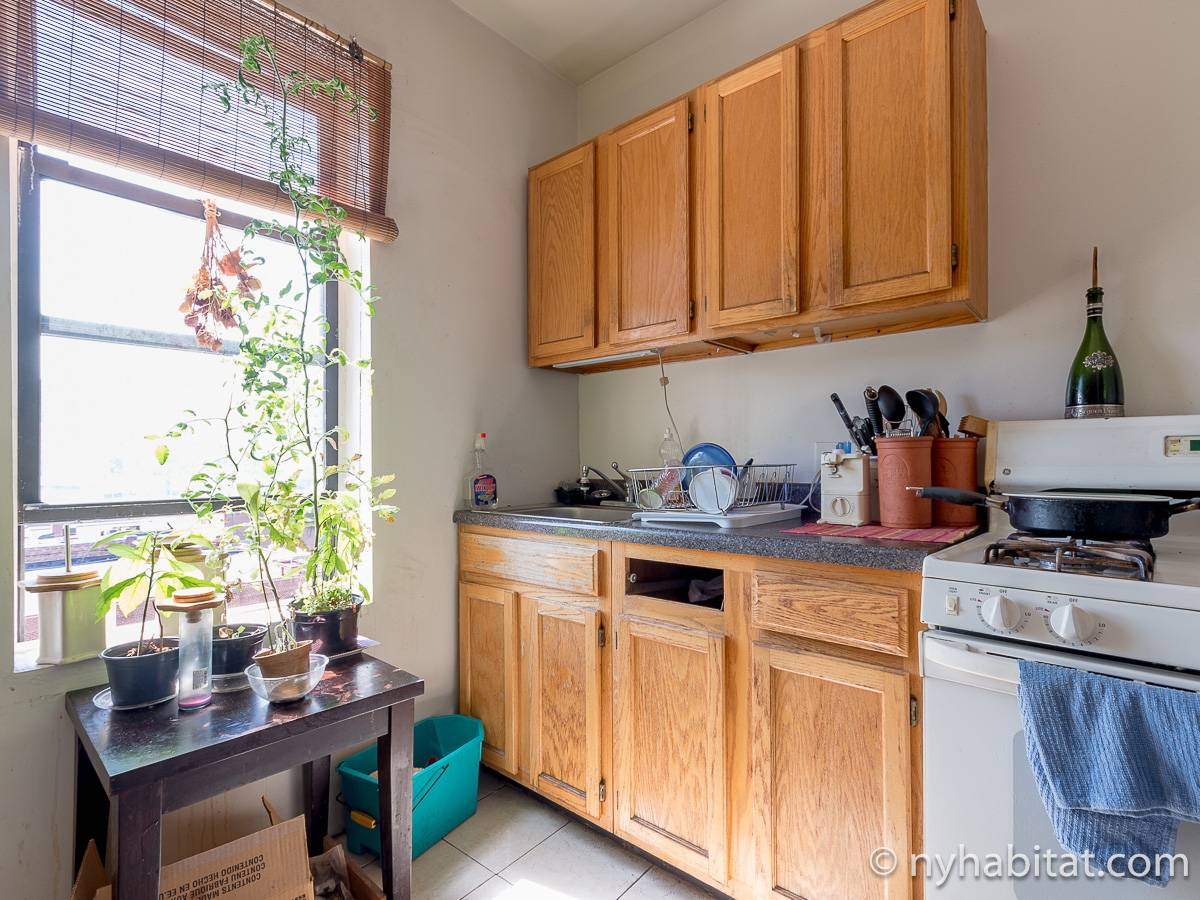 New York 2 Bedroom roommate share apartment - kitchen (NY-12825) photo 3 of 4