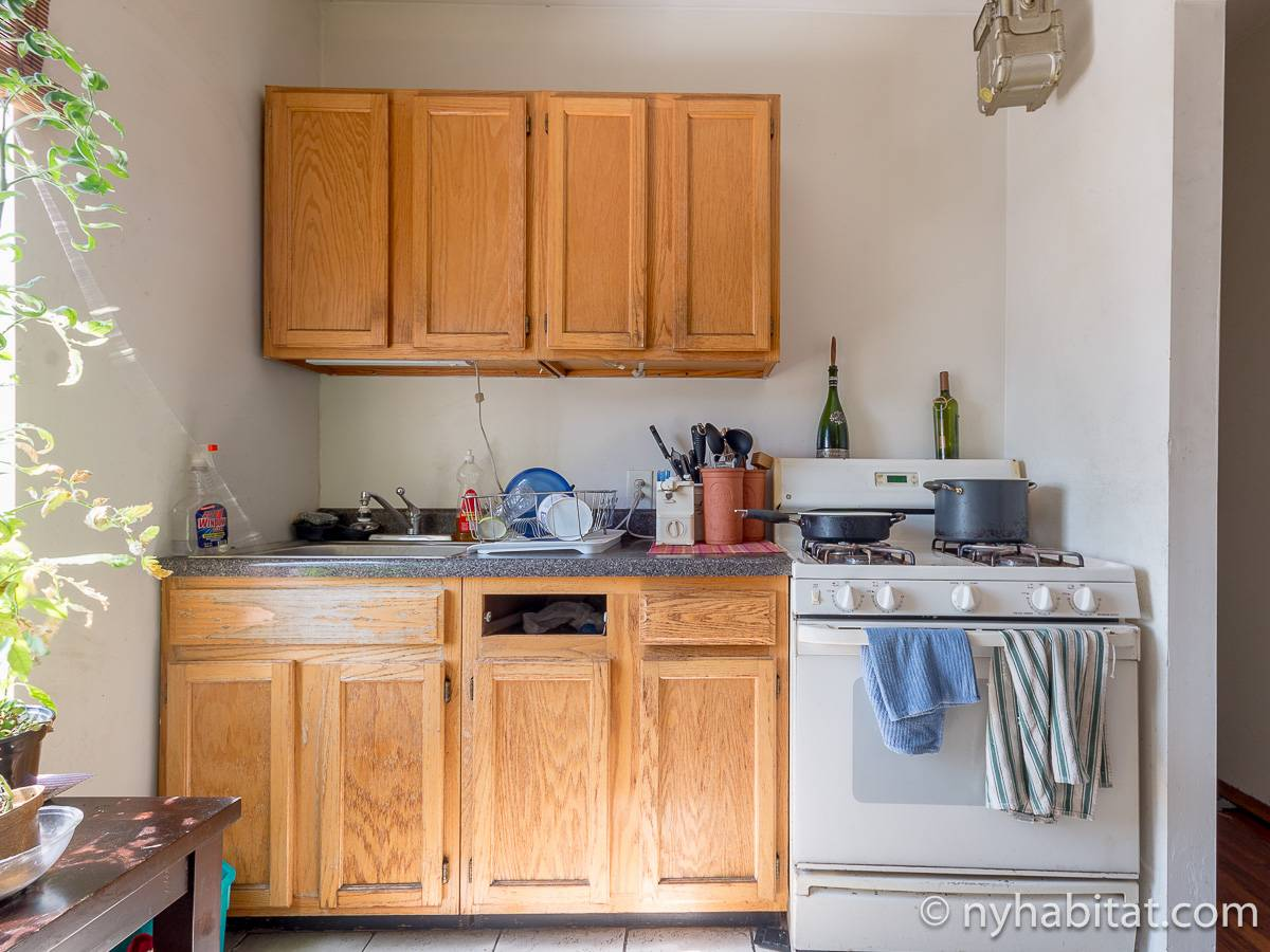 New York 2 Bedroom roommate share apartment - kitchen (NY-12825) photo 4 of 4