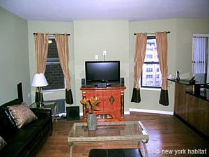 New York 1 Bedroom apartment - living room (NY-14078) photo 2 of 4