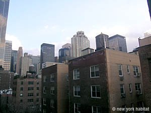 New York 1 Bedroom apartment - living room (NY-14078) photo 4 of 4