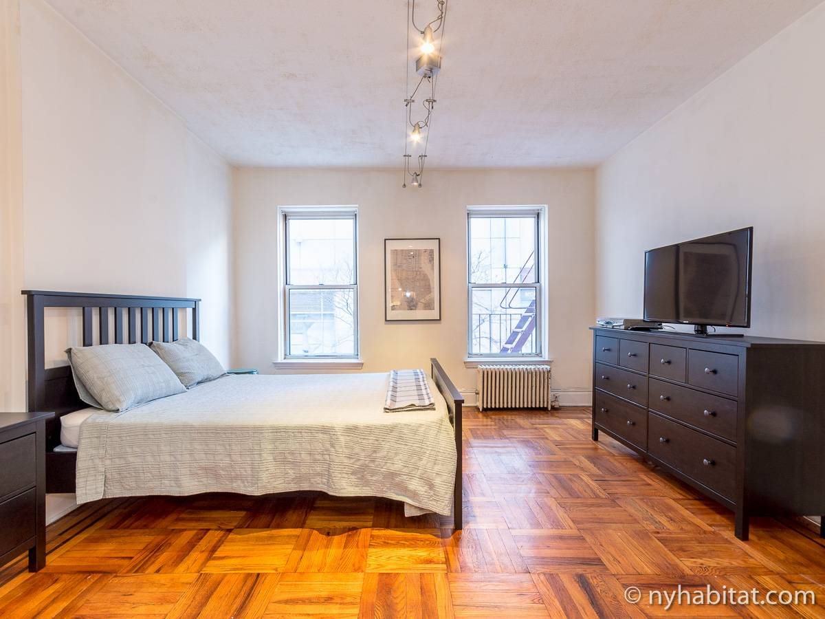 ... New York Alcove Studio apartment - living room (NY-14326) photo 3 of ...