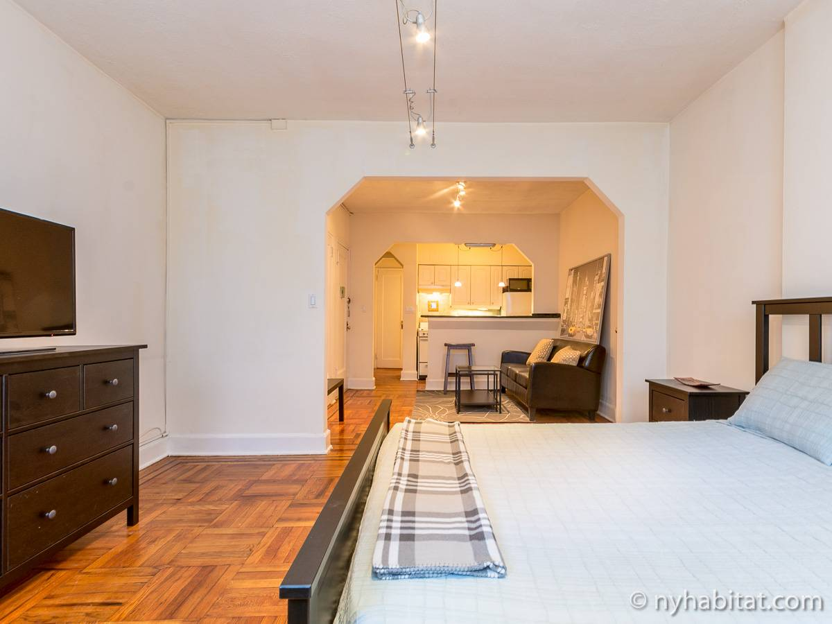 ... New York Alcove Studio apartment - living room (NY-14326) photo 7 of ...