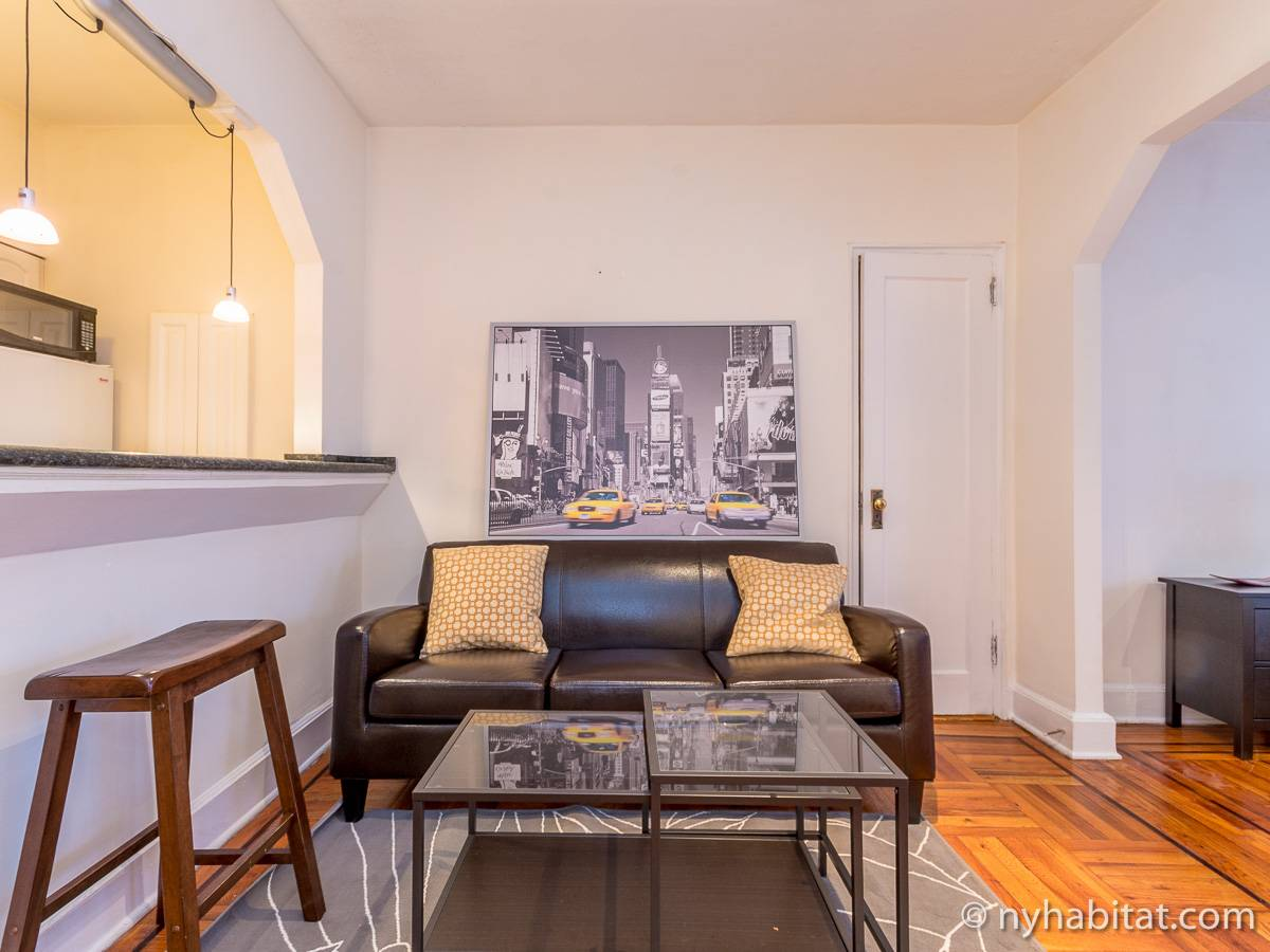 ... New York Alcove Studio apartment - living room (NY-14326) photo 9 of ...