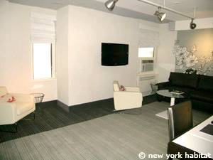 New York T2 appartement location vacances - séjour (NY-14524) photo 2 sur 4