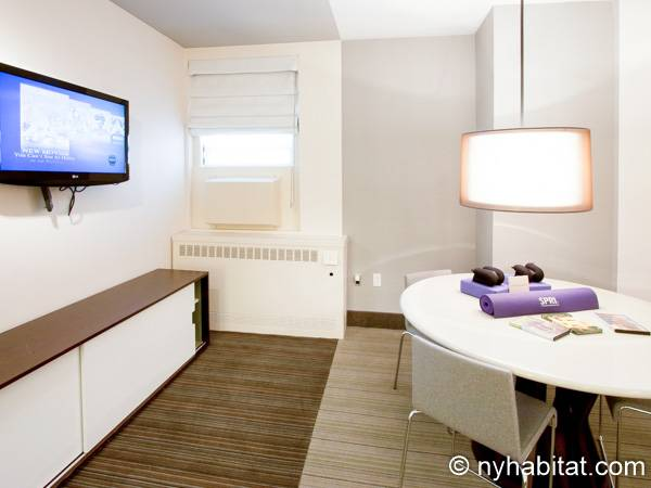 New York 1 Bedroom accommodation - living room (NY-14526) photo 3 of 4