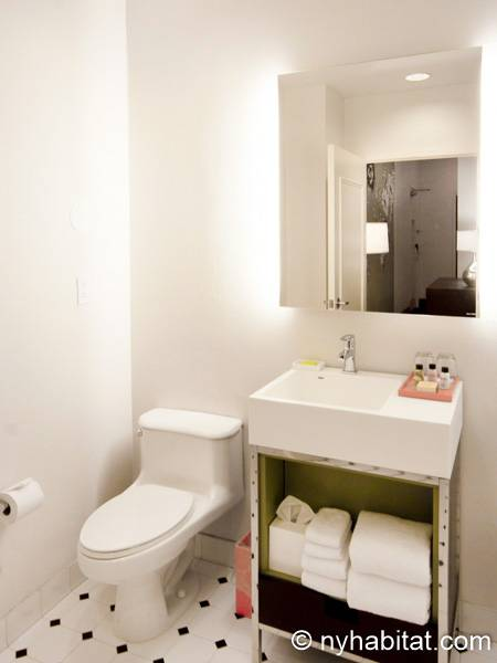 New York 1 Bedroom accommodation - bathroom (NY-14526) photo 1 of 4