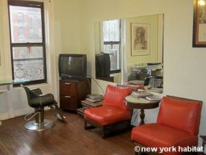 New York T4 appartement colocation - séjour (NY-14596) photo 5 sur 6
