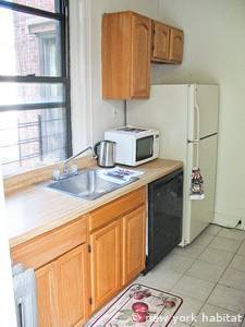 New York 1 Bedroom apartment - kitchen (NY-14603) photo 3 of 6