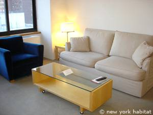 New York 1 Bedroom accommodation - living room (NY-14749) photo 3 of 7