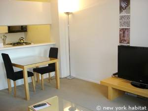 New York T2 appartement location vacances - séjour (NY-14749) photo 7 sur 7