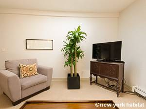New York 1 Bedroom accommodation - living room (NY-14781) photo 4 of 8