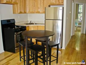 New York T5 appartement colocation - cuisine (NY-14938) photo 1 sur 2