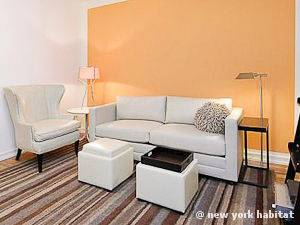 New York T2 logement location appartement - séjour (NY-15007) photo 2 sur 5