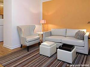New York Studio apartment - living room (NY-15048) photo 1 of 1