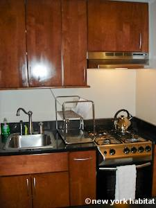 New York 1 Bedroom apartment - kitchen (NY-15085) photo 4 of 4