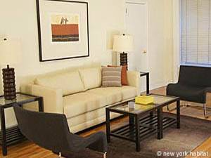 New York Studio T1 logement location appartement - séjour (NY-15091) photo 1 sur 3