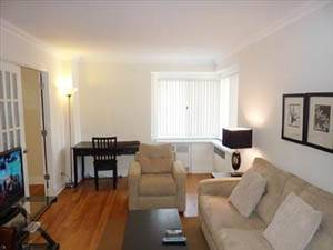 New York T2 logement location appartement - séjour (NY-15212) photo 2 sur 3