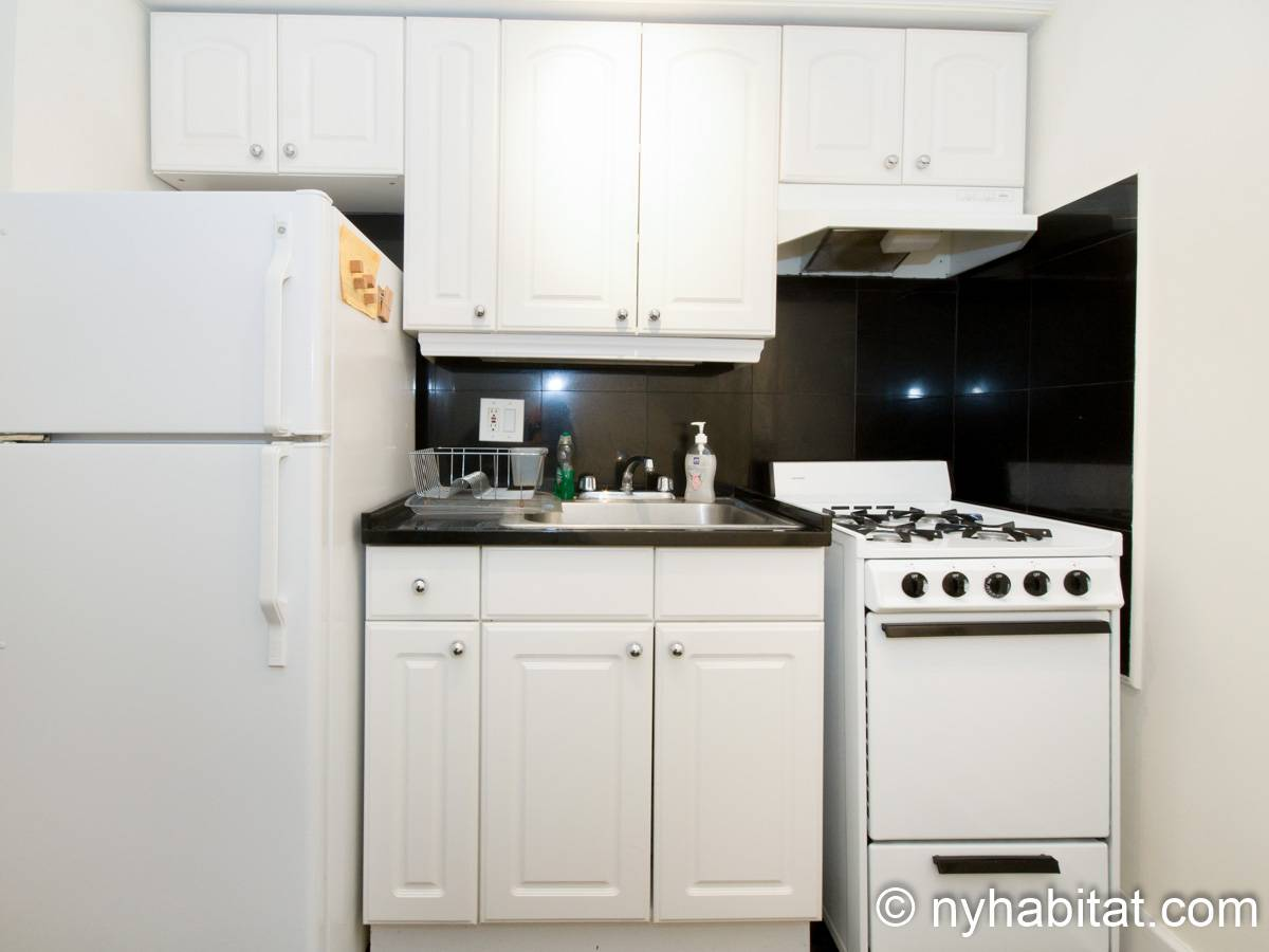 New York 1 Bedroom apartment - kitchen (NY-15255) photo 1 of 4
