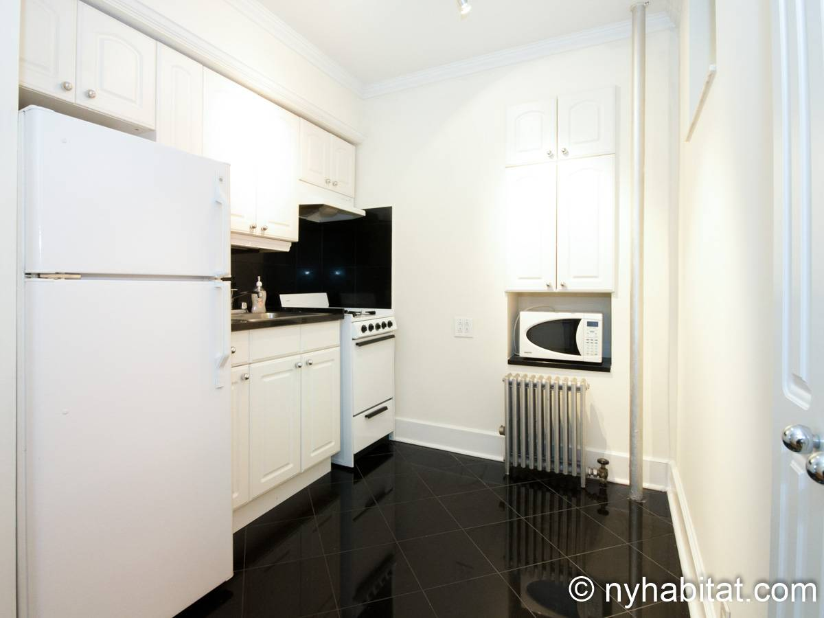 New York 1 Bedroom apartment - kitchen (NY-15255) photo 4 of 4