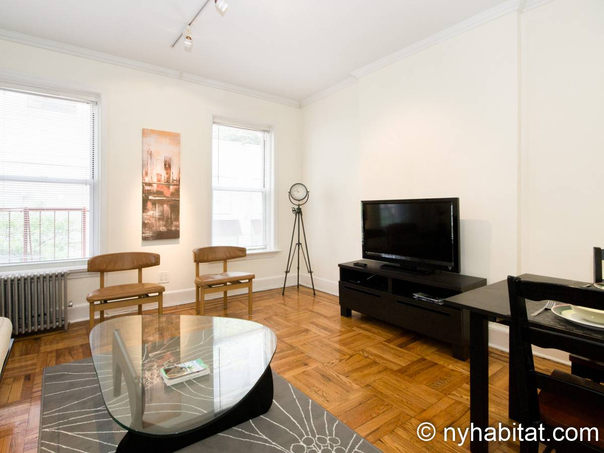 New York 1 Bedroom apartment - living room (NY-15255) photo 5 of 6