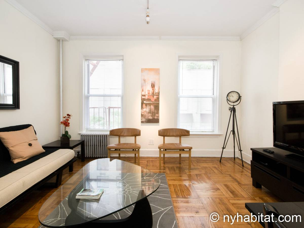 New York 1 Bedroom apartment - living room (NY-15255) photo 2 of 6