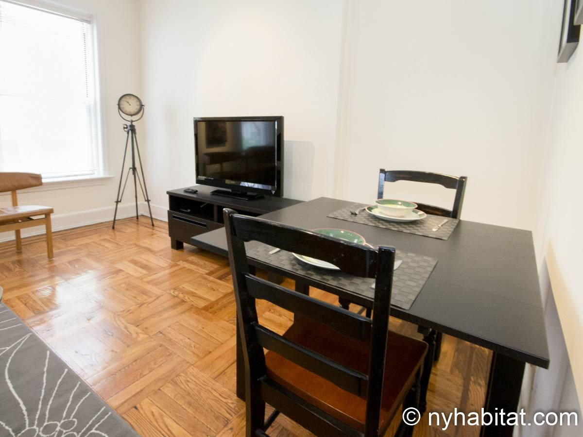 New York 1 Bedroom apartment - living room (NY-15255) photo 6 of 6