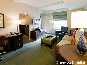 New York T2 appartement location vacances - séjour (NY-15271) photo 4 sur 4