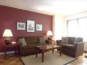 New York T2 logement location appartement - séjour (NY-15287) photo 1 sur 2