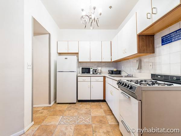 New York T2 logement location appartement - cuisine (NY-15307) photo 3 sur 4