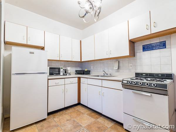 New York T2 logement location appartement - cuisine (NY-15307) photo 1 sur 4