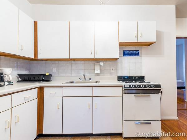 New York T2 logement location appartement - cuisine (NY-15307) photo 2 sur 4