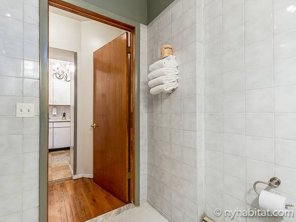 New York T2 logement location appartement - salle de bain (NY-15307) photo 2 sur 2