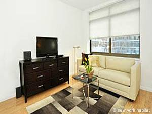 New York T3 logement location appartement - séjour (NY-15354) photo 1 sur 1