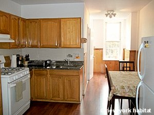 new york apartment 1 bedroom apartment rental in