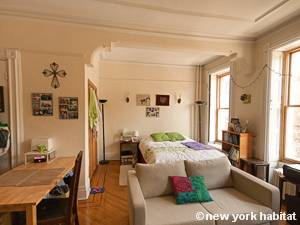... New York Studio Apartment   Living Room (NY 15810) Photo 11 Of 12 ...