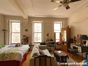 New York Apartment Studio Apartment Rental In Bedford Stuyvesant NY