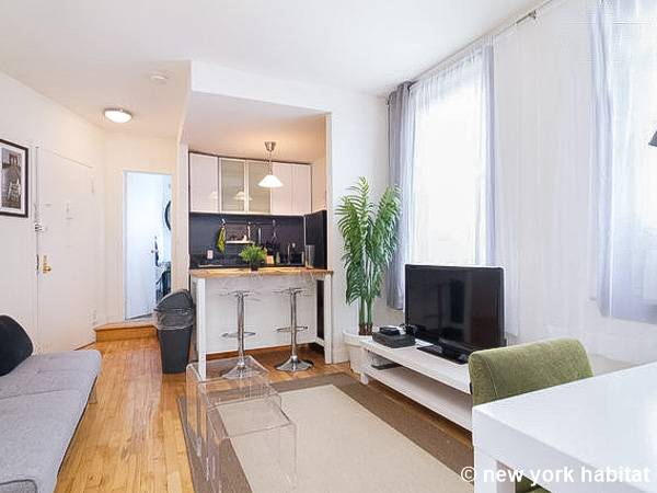 New York Apartment Alcove Studio Apartment Rental In West