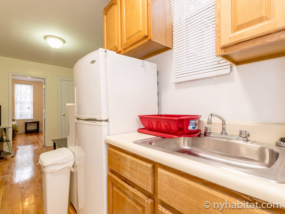 New York Apartment 1 Bedroom Apartment Rental In Sunnyside Queens Ny 16371