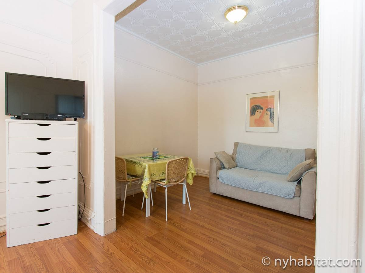 New York Alcove Studio apartment - living room (NY-16492) photo 4 of 8