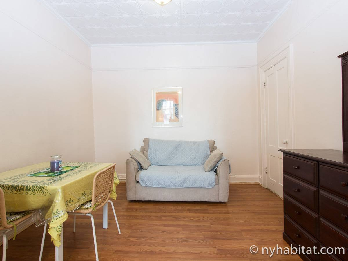 New York Alcove Studio apartment - living room (NY-16492) photo 7 of 8