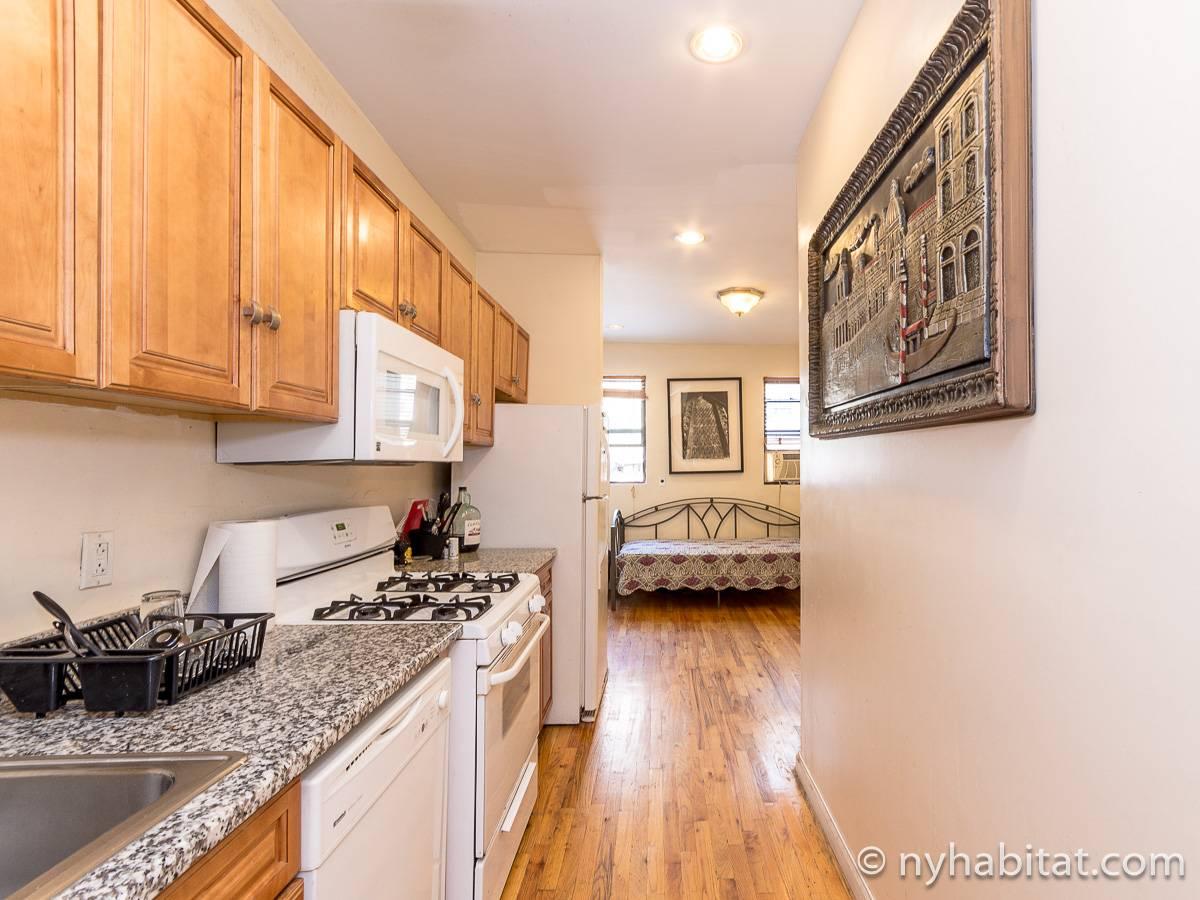 logement new york location meubl e t3 clinton hill. Black Bedroom Furniture Sets. Home Design Ideas
