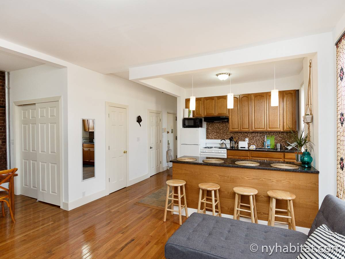 New York Apartment 3 Bedroom Apartment Rental in Crown Heights