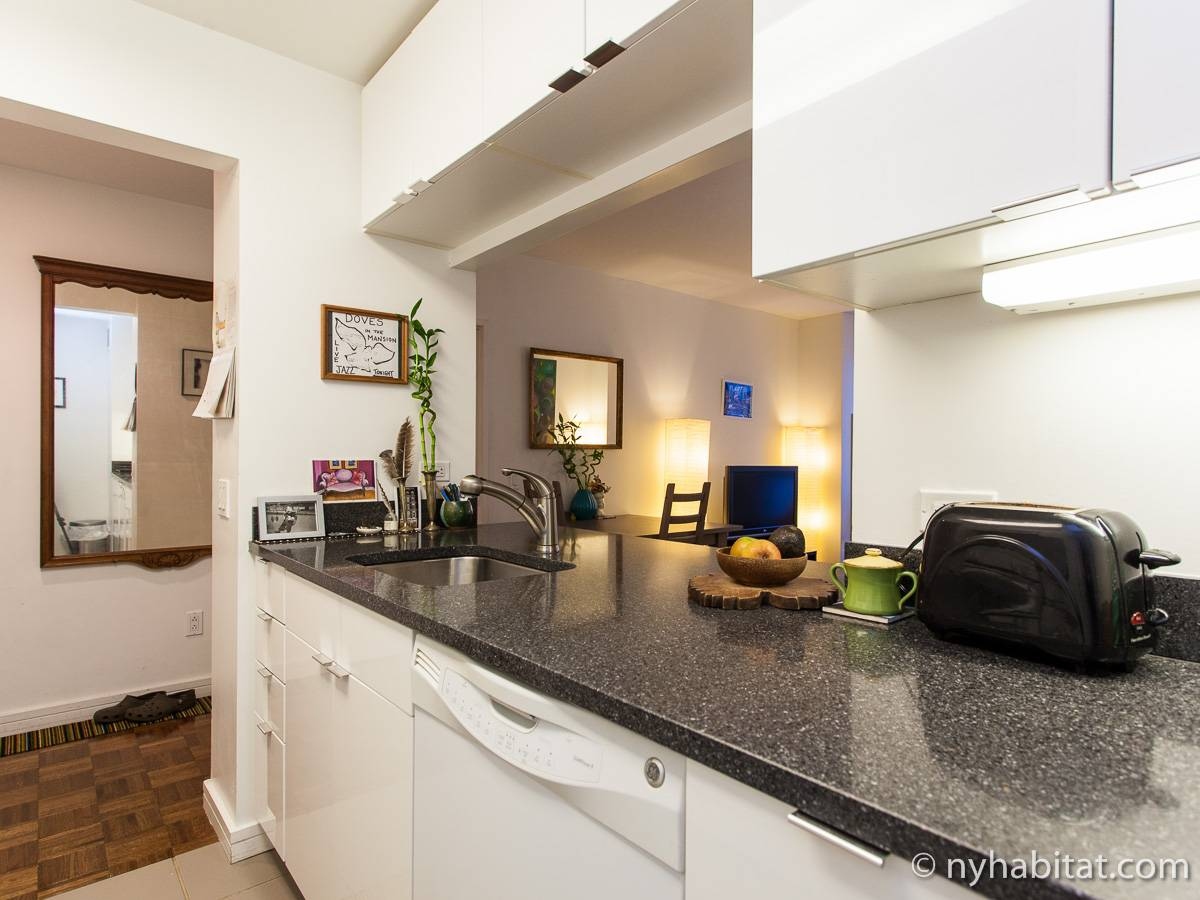 nueva york 2 dormitorios piso para compartir cocina ny