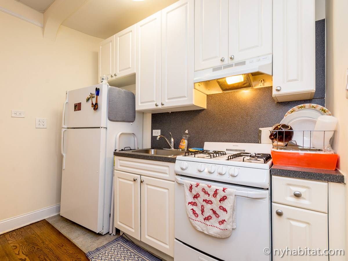 New York 1 Bedroom roommate share apartment - kitchen (NY-16708) photo 1 of 2