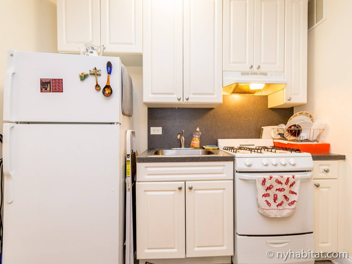 New York 1 Bedroom roommate share apartment - kitchen (NY-16708) photo 2 of 2