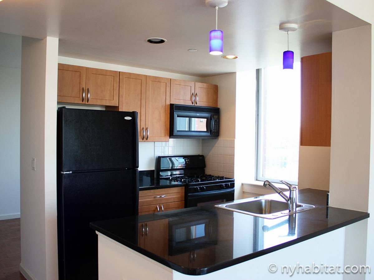 New York Studio apartment - kitchen (NY-16908) photo 1 of 1