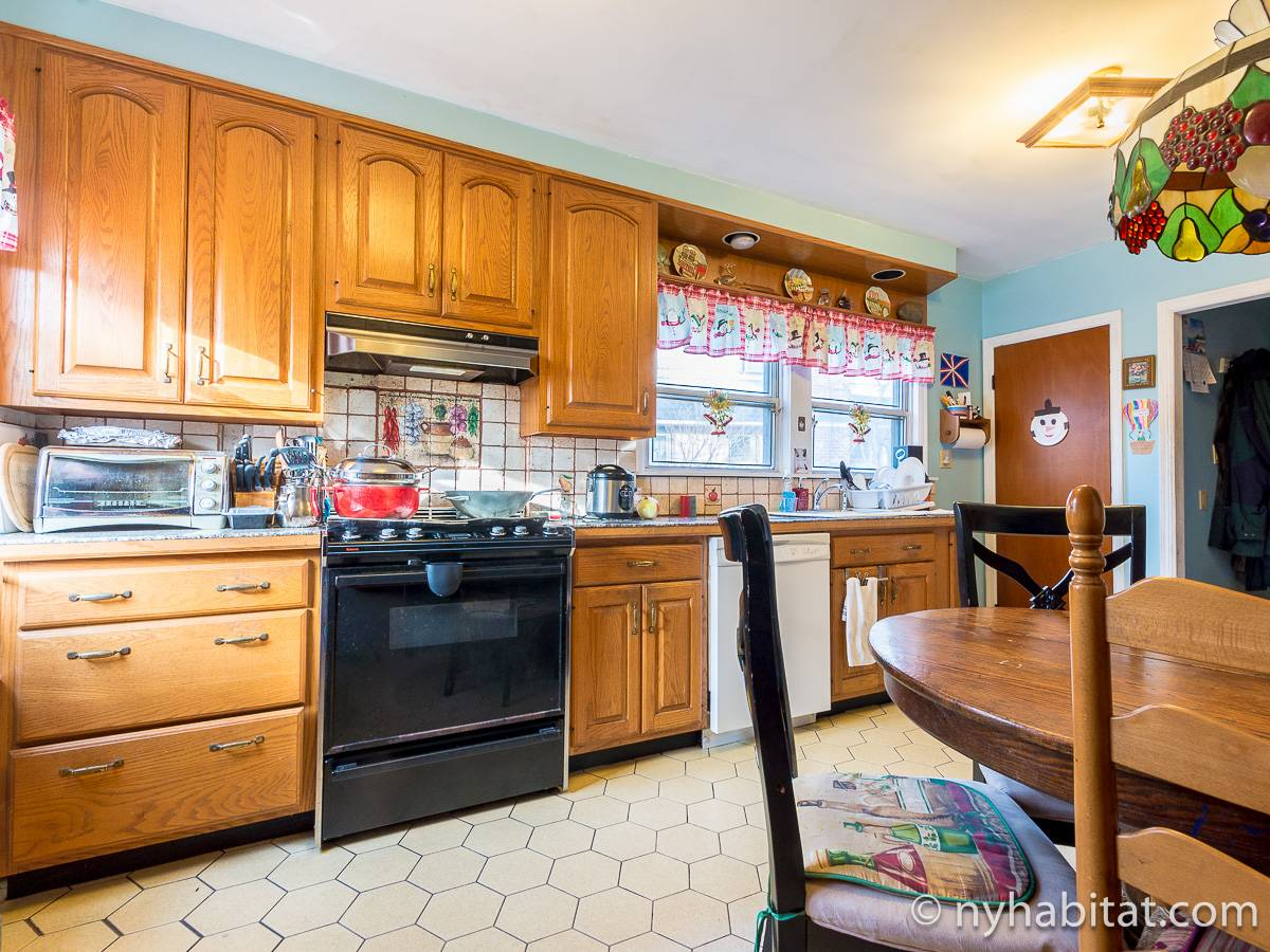 New York 2 Bedroom roommate share apartment - kitchen (NY-17081) photo 3 of 8